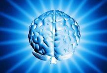 Nootropics & Cognitive Enhancers