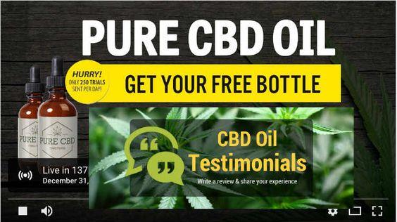 Best CBD Oil Reviews