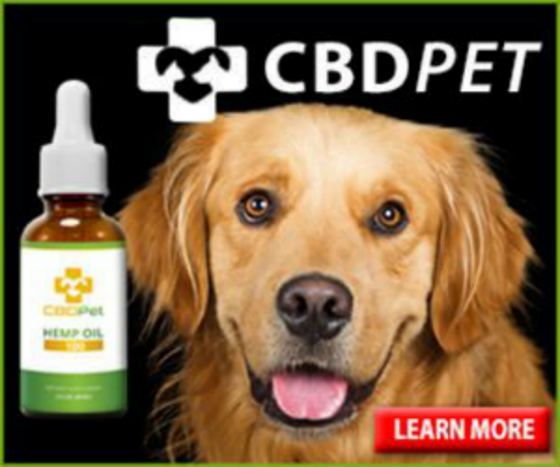 Pet CBD Oil Reviews :Best CBD Oil For Dogs With Arthritis & Aggression